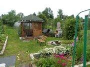 Продам дом. Сольцы г., Продажа домов и коттеджей в Сольцах, ID объекта - 502809963 - Фото 8