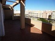Продажа квартиры, Торревьеха, Аликанте, Купить квартиру Торревьеха, Испания по недорогой цене, ID объекта - 313158714 - Фото 36