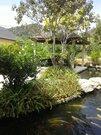 Вилла в Таиланде, Продажа домов и коттеджей Пхукет, Таиланд, ID объекта - 503086932 - Фото 8