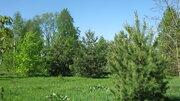 Участок 15 соток, баня, свой пляж, дер.Ново-Окатово, Калязинский район - Фото 2