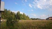 Участок 11 соток в сосновой лесу на берегу реки в Чеховском р-не - Фото 4