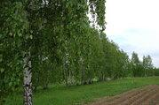 Продаю дачу СНТ «Скнига» Серпуховский р-он в 85 км. от МКАД, Продажа домов и коттеджей Подмоклово, Серпуховский район, ID объекта - 502709927 - Фото 17