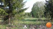 Продается участок, Новорижское шоссе, 65 км от МКАД - Фото 4