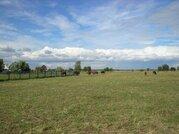 Предлагаем земельный участок зсн, Земельные участки Желдыбино, Киржачский район, ID объекта - 201366888 - Фото 3