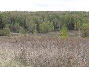Продается земельный участок в д. Никольское Зарайского района МО - Фото 5