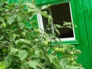 Земельный участок с домиком в садоводческом товариществе «Орешек» Кимр, Дачи Ушаковка, Кимрский район, ID объекта - 502009978 - Фото 7