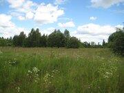 2 гектара со старым домом в д. Богданово Пушкиногорского района - Фото 3