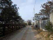Участок 5 соток в Севастополе у соснового леса- мечта для жизни! - Фото 2