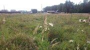 Участок 11 соток в сосновой лесу на берегу реки в Чеховском р-не - Фото 2