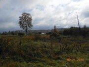 Купить дом с участком в Валдайском районе, деревня Козлово - Фото 4