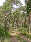 Коттедж в чернолучье, Дома и коттеджи на сутки в Омске, ID объекта - 502349891 - Фото 7