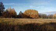 Продается земельный участок 10 сот. на оз. Отрадное - Фото 3