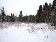 Продажа участка, Приморск, Выборгский район - Фото 1