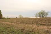 800 000 Руб., Первая линия Чудского озера, Земельные участки в Гдовском районе, ID объекта - 201271314 - Фото 7