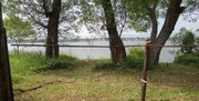 Участок на 1 береговой линии р. Волга, д. Плоски. - Фото 2