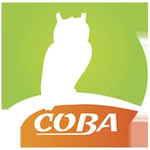 Агентство недвижимости СОВА