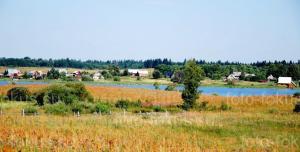 Недвижимость на 1-ой линии оз.Селигер в окружении